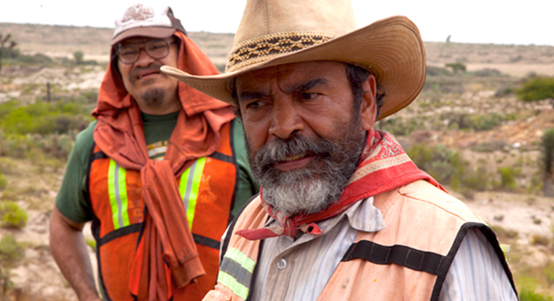 12 nominaciones mexicanas en Premios Platino
